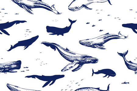 Seamless pattern with sea animals. Whales are different types of silhouettes and drawings doodle by  hand draw illustration. Vector seamless background.  Animal wallpaper.