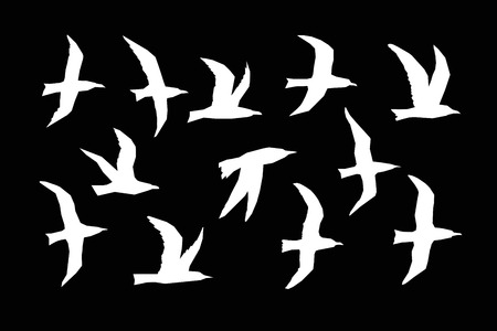 Sea gulls silhouettes vector set. White birds fly on a black background. Chopped straight line silhouette. Stok Fotoğraf - 125301686