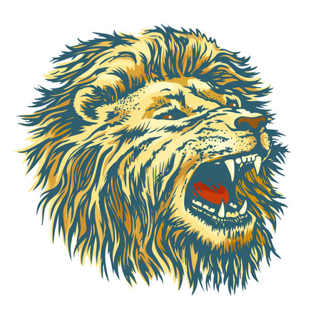 Head of the lion Çizim