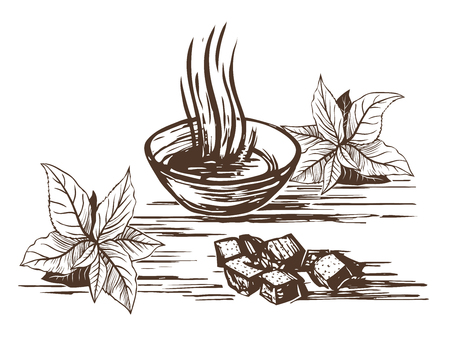 Oriental tea. Cup with hot tea and lumpy sugar, tea leaves in a set. Imitation of engraving. Scratch board style imitation. Hand drawn sketch image. Illustration