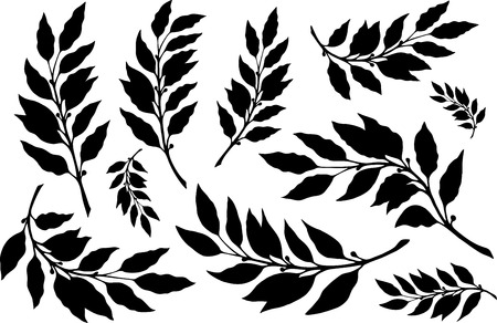 Laurels leaves with branches silhouette set