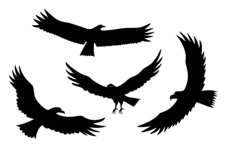 Silhouettes of flying eagles vector bird predator set