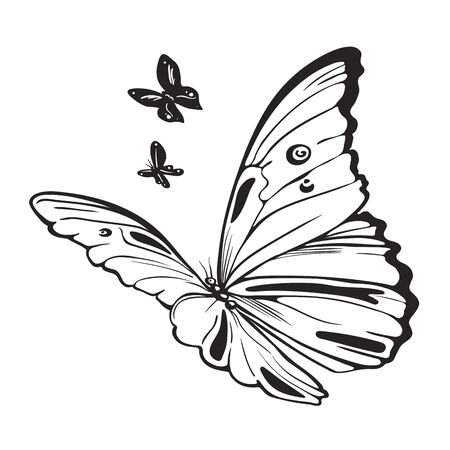 Butterflies black and white illustration