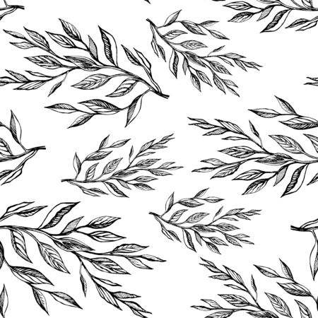 Seamless pattern botanicalvector illustration