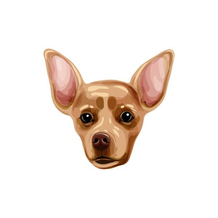 Brown Russian that terrier head of a dog.  Vector illustration. Funny cartoon-style icon for a different design. Cute family dog.