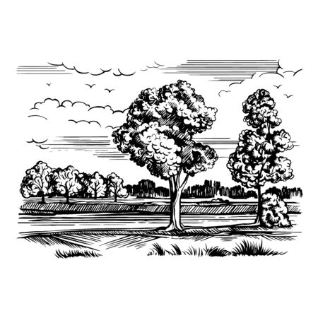 Landscape with the river Illustration