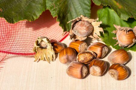 Hazelnuts fruit with beneficial properties