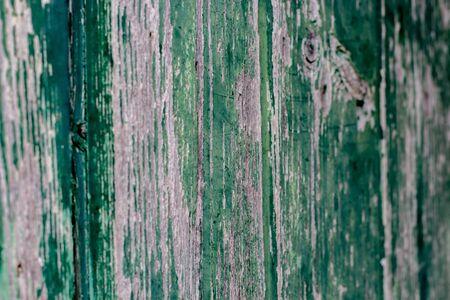 detail of an ancient door