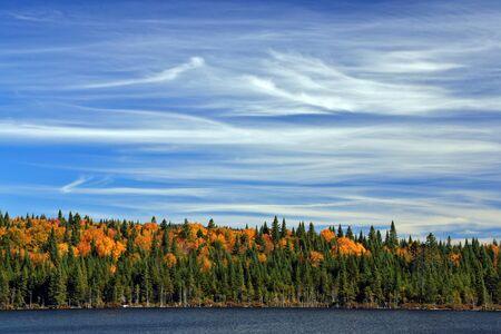カナダの秋。青い空、白い雲。 写真素材