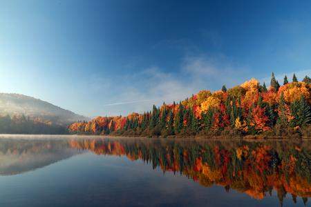 reflexion: Otoño en Canadá. Bosque del otoño reflejada en el agua. Foto de archivo