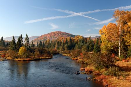 カナダの秋。青い空、白い雲。秋、山や森川。