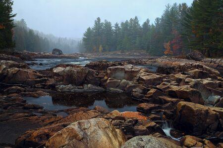 赤黄色と森林の葉秋の磯山川。秋の時間の山川。カナダの川。 写真素材