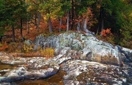 山の森林に赤、黄色の葉、岩の多い海岸。カナダ。