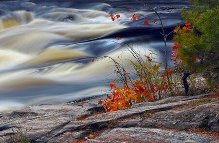 秋の Canada.Colors の秋。渓流。川のほとり。渓流。明るい色。石、川。 写真素材