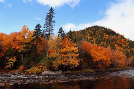 カラーの森の水しぶきは、水に反映されます。カラフルな秋の風景です。反射冷たい、暗い水の秋の森。悲観的な秋の空。国立のモン ・ トランブラ 写真素材