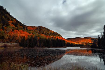 オレンジ色の秋の森は、日光山の中腹で点灯します。秋の木が太陽の梁で輝いていた。鉛のような雲。カラフルな秋の風景です。パルク モン トラン 写真素材