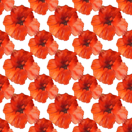 poppy flowers seamless pattern on white background.handmade oil painting on canvas Stock Photo