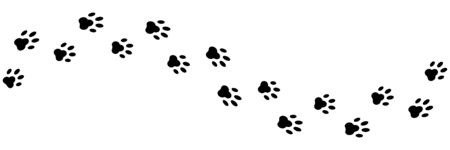 Paws print isolated vector element. Black silhouette paw dog footprint vector illustration. Abstract concept. Black cat trace. Animal footprint. EPS 10 Ilustracja