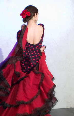 gitana: Flamenco bailar�n de pie en la fase  Foto de archivo