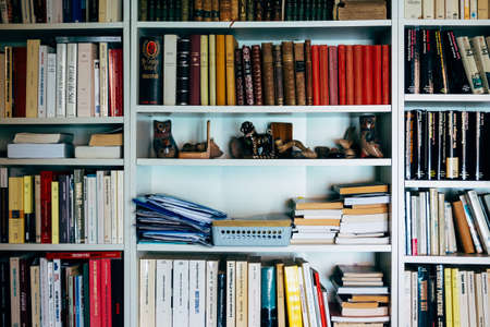 Books and souvenirs on shelves in home library Imagens