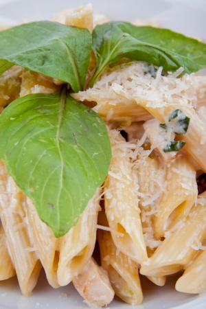 Pasta with cheese and basil on a plate photo