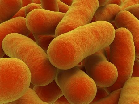 細菌、クローズ アップ任意棒状細菌を例えば記述するこのイメージを使用可能性があります、結核、サルモネラ、炭疽菌、赤痢、E 大腸菌、破傷風,  写真素材