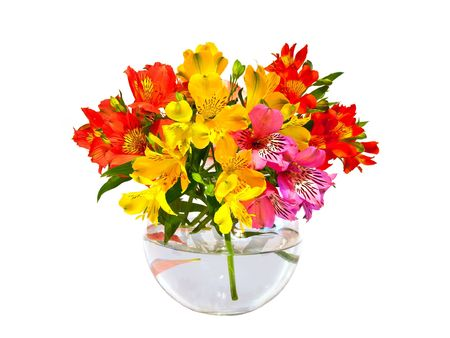 bouquet of flowers in a vase Stock Photo - 8000904