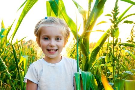 portrait of beautiful little girl in a meadow photo