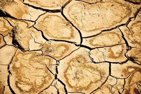 cracked desert ground as a background photo