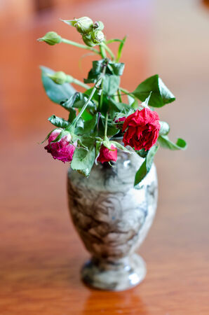 wilted rose in a vase photo