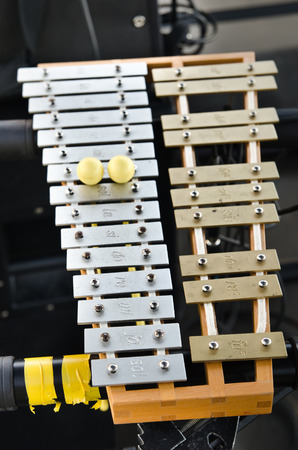 xilofono: xil�fono profesional en el escenario
