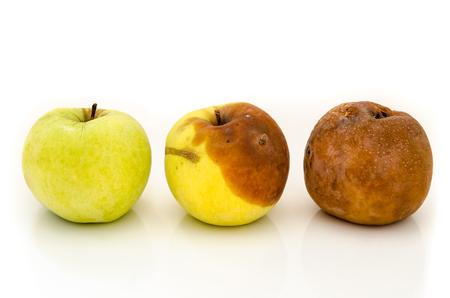 白い背景で隔離の腐ったリンゴ 写真素材