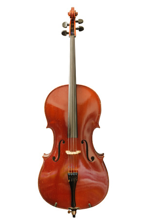 cello isolated on a white background