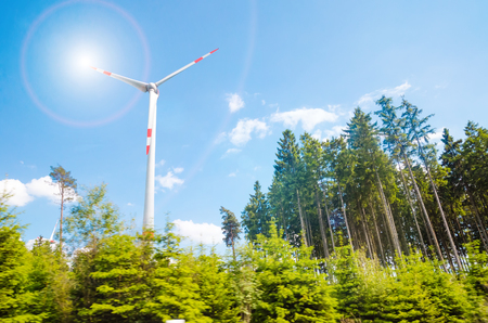 windmill with the pine trees Stock Photo