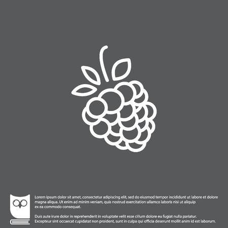 luscious: Web line icon. Raspberries