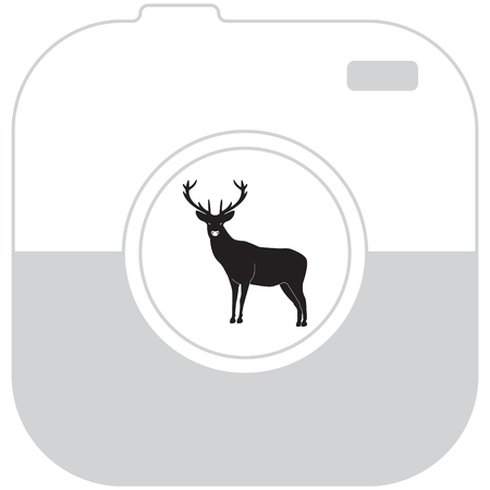 silhouette deer with great antler