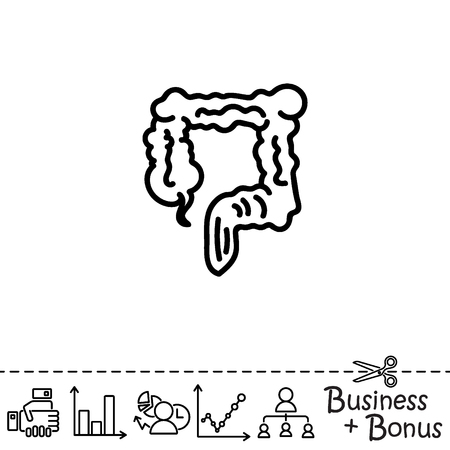 rectum: Web line icon. Colon, large intestine illustration