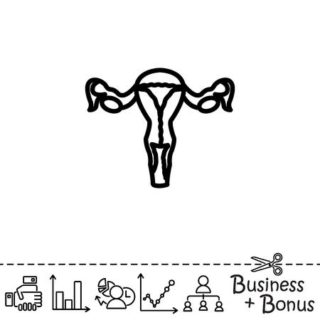 Web line icon. Uterus. Illustration