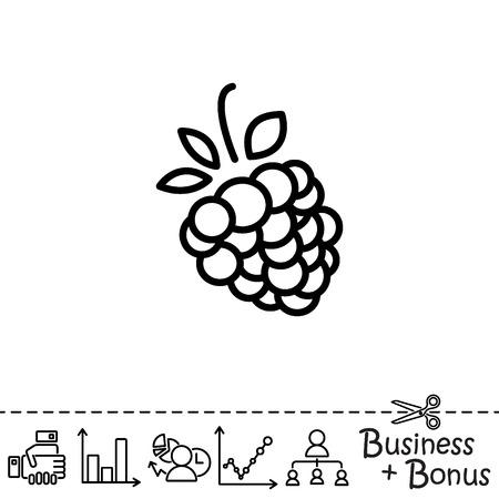 Web line icon. Raspberries