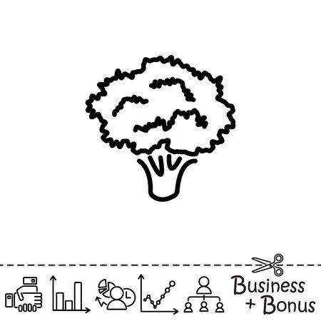 Web line icon. Broccoli Illustration