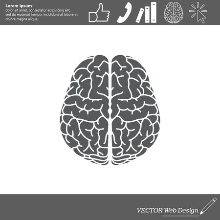 icon: Brain icon Illustration