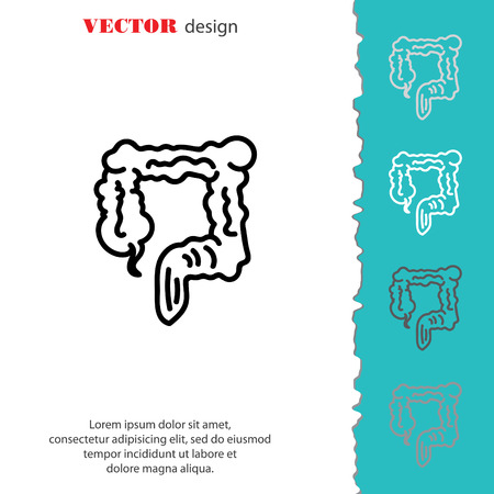 Web line icon. Colon, large intestine