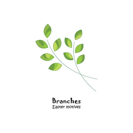 Color vector illustration. Branches on white background.