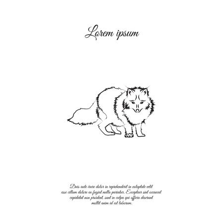 Arctic fox icon illustration on white background.