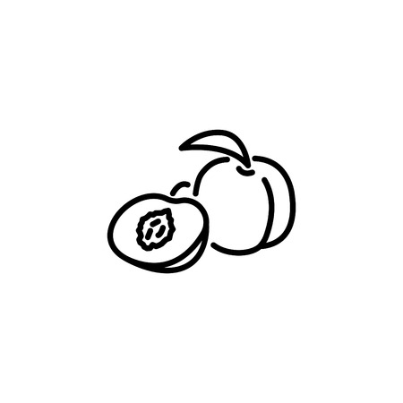 Web line icon. Apricot. 일러스트