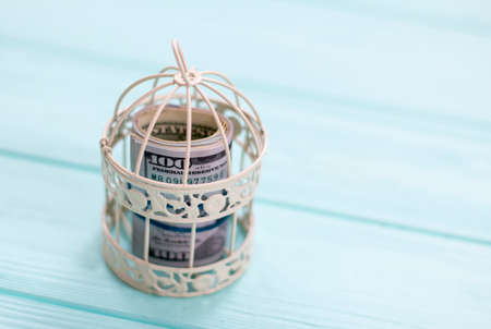 dollars in an iron cage on a wooden background