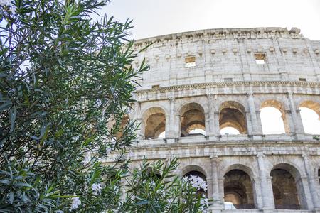 Colisée à à Rome