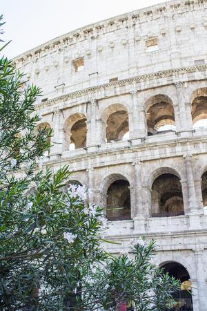 Colosseum in in Rome