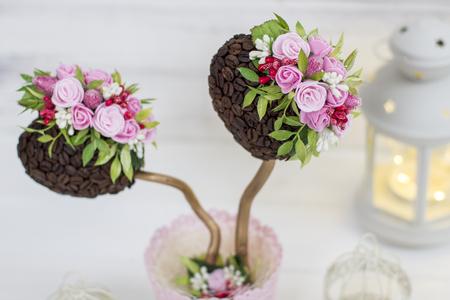 A coffee tree. Ornamental tree. Topiary. Wedding Decoration and Lantern Reklamní fotografie
