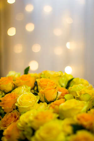 Bouquet of yellow roses. Beautiful yellow roses and bokeh lights in background